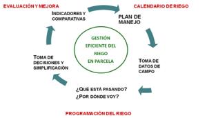 Ciclo-gestion-riego-en-parcela
