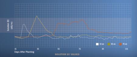 valores de CE decagon Labferrer