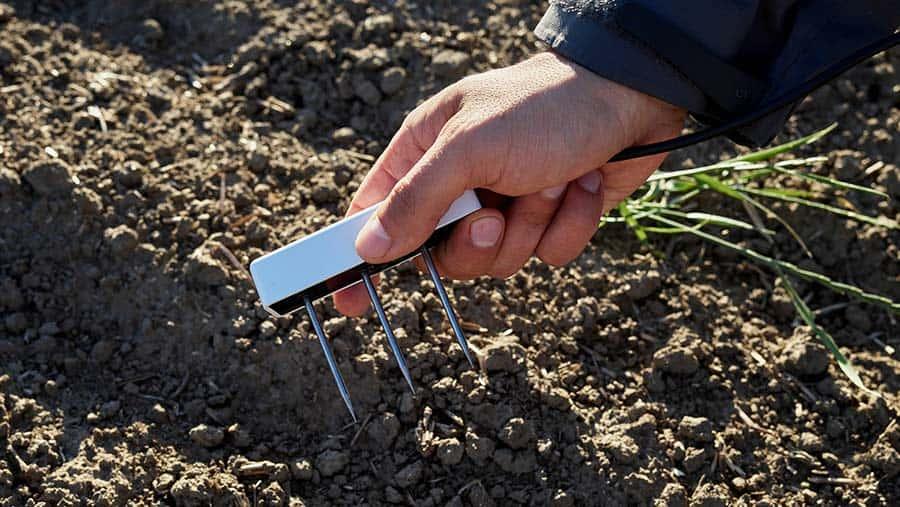 Cómo interpretar los datos de humedad del suelo
